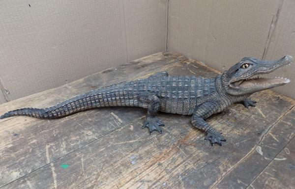 Country life baby alligator approx 23 inches long