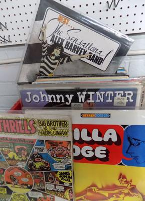 "Over 60 LPs and 12"" singles including; Vanilla Fudge, Big Brother, McCartney, Dylan etc."