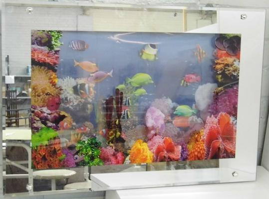 Light up electric picture aquarium