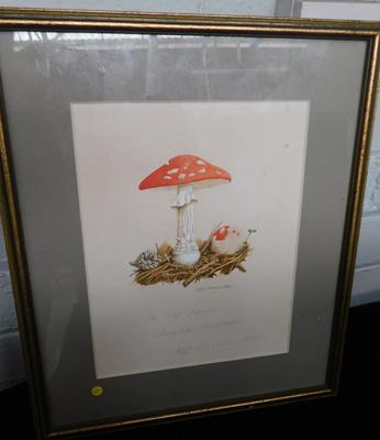 "Vintage watercolour of toadstool, signed ASB Madden approx 14"" x 12"""
