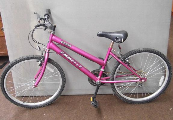 Oasis girls bike