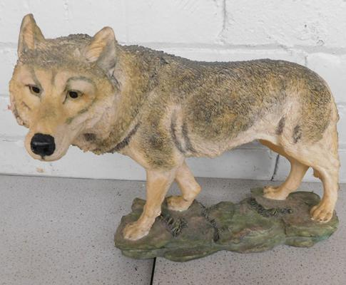 Academy wolf figurine, light resin - approx. 12 x 14 inches